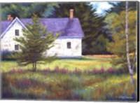 Wild Meadow Farm Fine Art Print