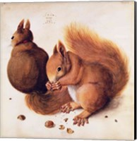 Squirrels, 1512 Fine Art Print