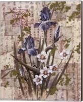 Purple Iris Fine Art Print