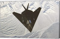 Lockheed F-117 Stealth Fighter Fine Art Print