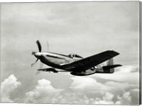Low angle view of a military airplane in flight, F-51 Mustang Fine Art Print