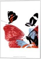 Butterflies Dance IX Fine Art Print