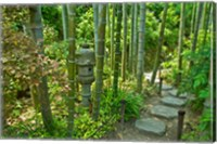 Hasedera-Bamboo Grove Fine Art Print