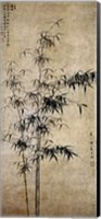 Wang Fu-Ink Bamboo Fine Art Print