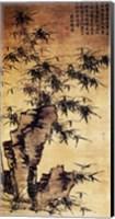 Xia Chang-Bamboo and Stone Fine Art Print
