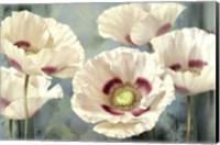 Tasmanian Poppies I Fine Art Print