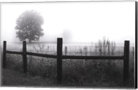 Fog and Fence Fine Art Print