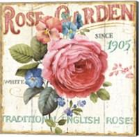 Rose Garden I Fine Art Print