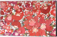 Cherry Blooms Fine Art Print