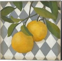Fruit and Pattern IV Fine Art Print