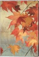 Maple Leaves II Fine Art Print