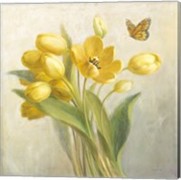 Yellow French Tulips Fine Art Print