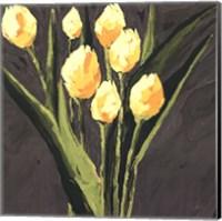 Yellow Tulips On Gray Square Fine Art Print