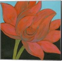 Bliss Lotus I Fine Art Print