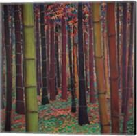 Magical Forest Fine Art Print