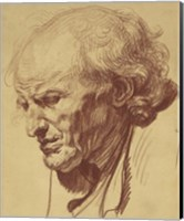 Study of the Head of an Old Man Fine Art Print