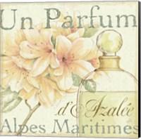 Fleurs and Parfum III Fine Art Print