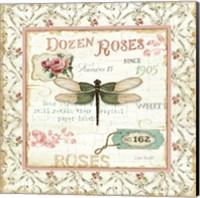 Rose Garden VI Fine Art Print
