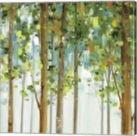 Forest Study II Fine Art Print