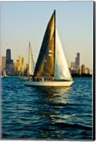 Sailboat in a lake, Lake Michigan, Chicago, Cook County, Illinois, USA Fine Art Print