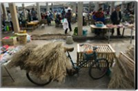 Traditional town market with grass on bicycle for making brooms, Xizhou, Erhai Hu Lake Area, Yunnan Province, China Fine Art Print
