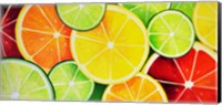 Fruit Slices Fine Art Print