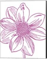 Florette I Fine Art Print