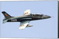 Romanian Air IForce AR-99 Soim jet trainer Fine Art Print
