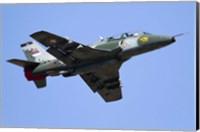 A Serbian Air Force Soko G-4 Super Galeb Fine Art Print