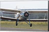 An Antonov An-2 taking off from an airfield in Bulgaria Fine Art Print