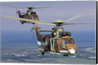 Eurocopter AS532 Cougar helicopters in flight over Bulgaria Fine Art Print