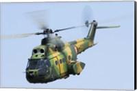 Romanian Air Force IAR-330M Puma helicopter Fine Art Print