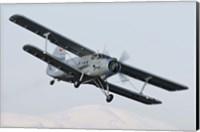 Bulgarian Air Force Antonov An-2 in flight over Bulgaria Fine Art Print