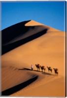 Camel Caravan with Sand Dune, Silk Road, China Fine Art Print