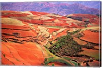 China, Yunnan, Tilled Red Laterite, Agriculture Fine Art Print