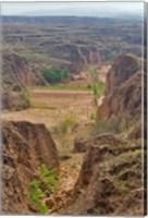 Shepard, Yellow Valley cliff, Taigu, Shanxi, China Fine Art Print