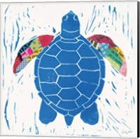 Sea Creature Turtle Color Fine Art Print