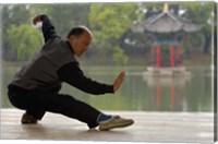 Man Doing Tai Chi Exercises at Black Dragon Pool with One-Cent Pavilion, Lijiang, Yunnan Province, China Fine Art Print