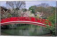 Spring Season, Kyoto, Japan Fine Art Print