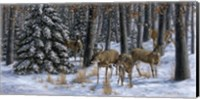 Winter Gathering Fine Art Print