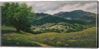 Spring in Carmel Valley Fine Art Print
