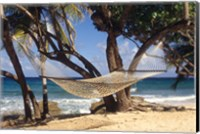 Hammock tied between trees, North Shore beach, St Croix, US Virgin Islands Fine Art Print
