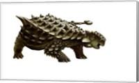 An armored Saichania ankylosaurid, white background Fine Art Print