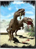 Two Allosaurus with a Hypsilophodon in mouth as next meal Fine Art Print