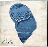 Inspirational Blue Shell I Fine Art Print