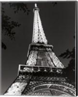 Eiffel Tower at Night Fine Art Print