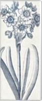 Eden I  Indigo and White Fine Art Print