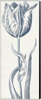 Eden IV  Indigo and White Fine Art Print