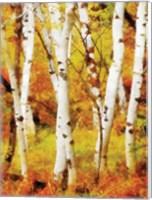 Glowing Forrest Fine Art Print