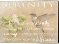 Serenity Hummingbird Fine Art Print